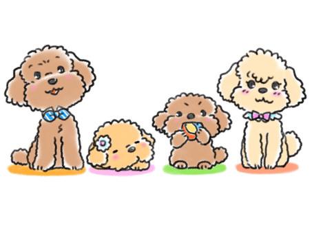 Toypoo family