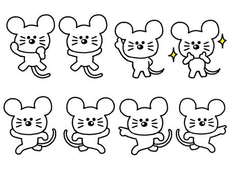 White rat set (simple)