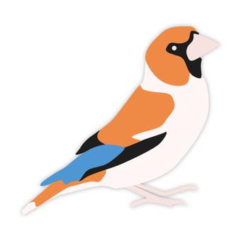 Shime (familiar bird)