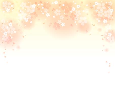 Sakura 58