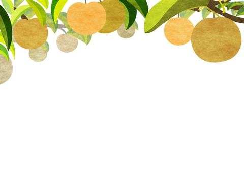梨の木のフレーム