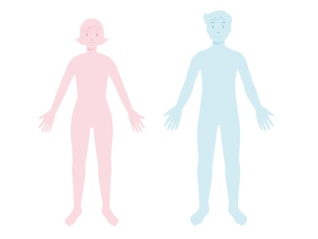 Human body type _ female and male