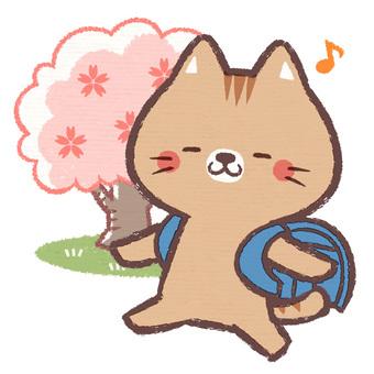 貓入場儀式(藍色)