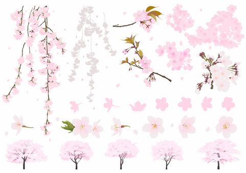 Real cherry tree set