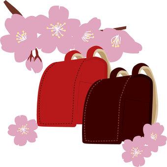 Sakura and a school bag