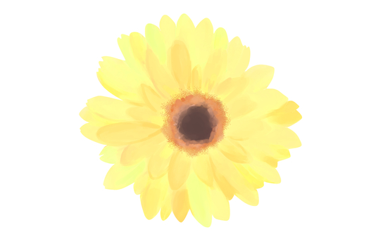 Flower _ Yellow