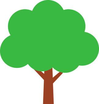 나무 소재 9