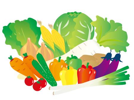 Variety of vegetables 5