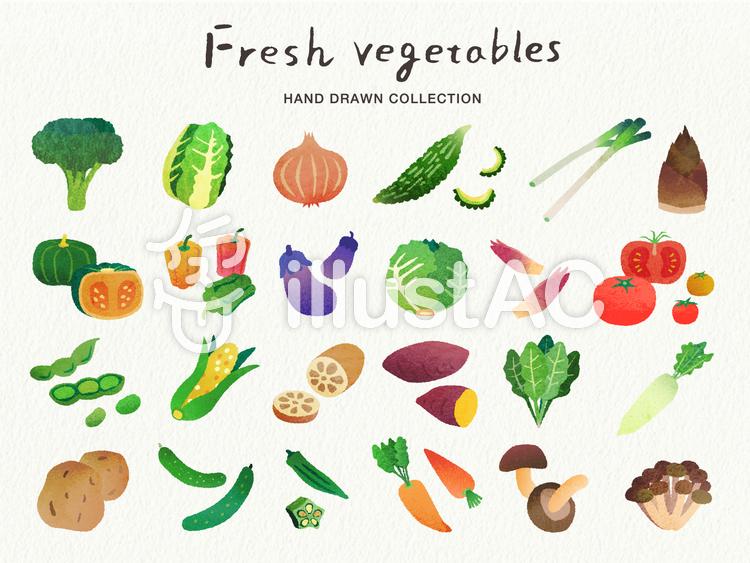 手描き風の野菜のイラストセットイラスト No 1178795無料イラスト
