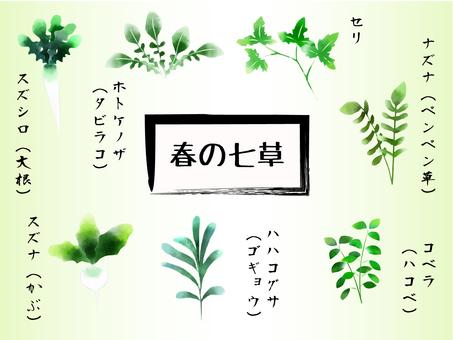 Spring taste Spring herb Watercolor style