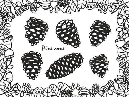 Pinecone monochrome