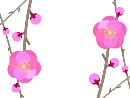 梅花枝框架