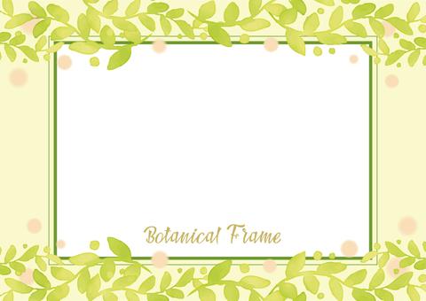 Botanical frame 5