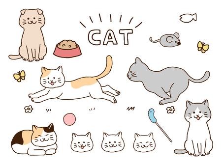고양이 세트 (간단)