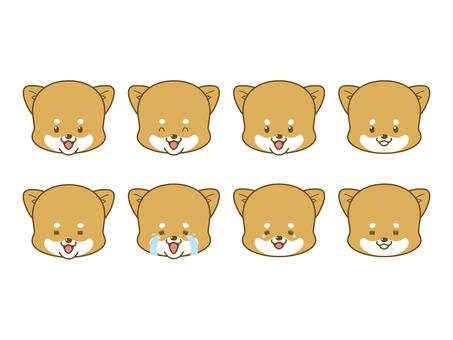 Poach Shiba _ face _ 01