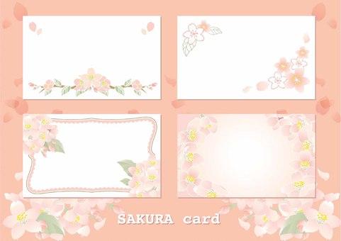벚꽃 카드