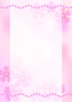 Sakura cherry line 16