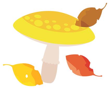 Mushrooms and fallen leaves 2