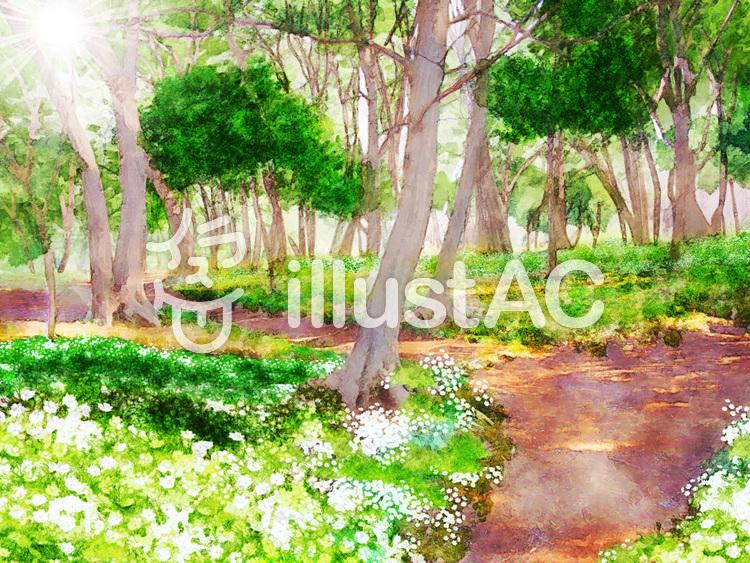 水彩画 散歩道のイラスト