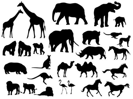 Animal silhouette set