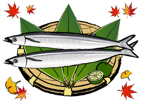 Japanese style material Autumn autumn sweetfish pacific saury