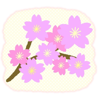 벚꽃 지점 ③