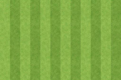 Shiba background 1