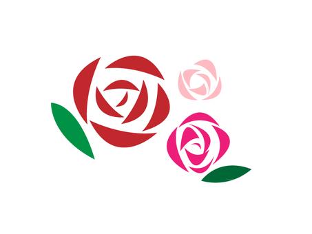Rose red rose pink rose