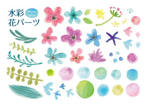 Water color flower parts