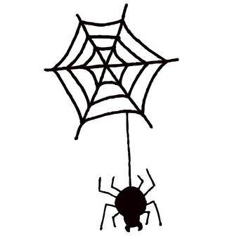 クモの巣 クモ 手描き イラスト