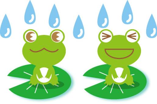 Rain and frog 2