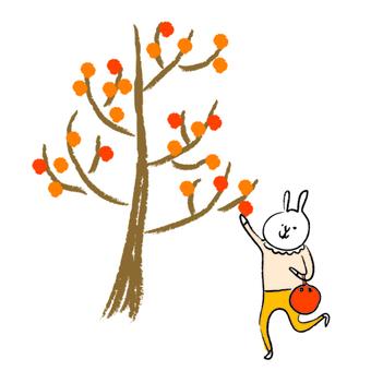 Autumn color rabbit
