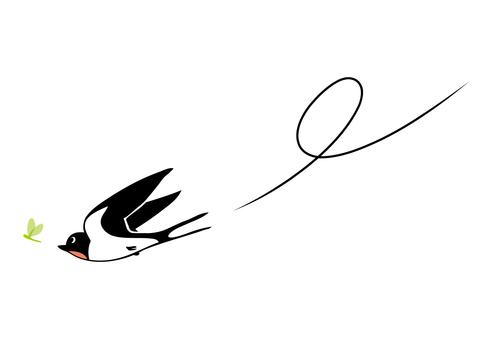 Swallow (raspberry)
