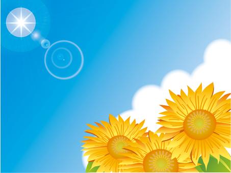 青空と太陽とひまわりー2