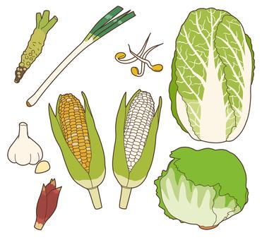 Vegetables (pale vegetables) 2/3