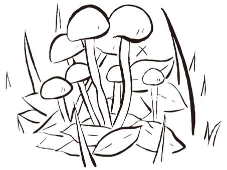 Aisenbon bamboo