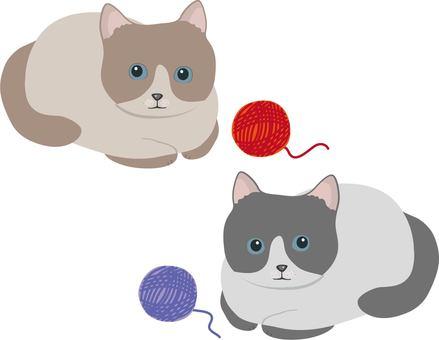 Yarn ball Hachi ware cat