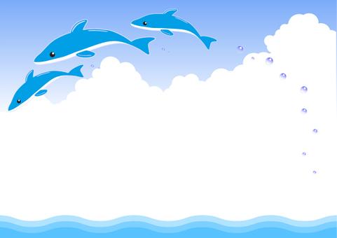 Dolphin's frame-3