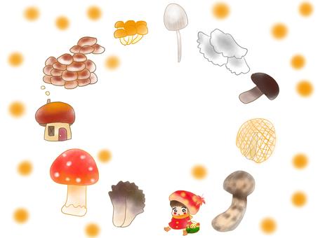 蘑菇蘑菇蘑菇