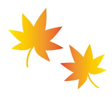 秋葉(漸變)