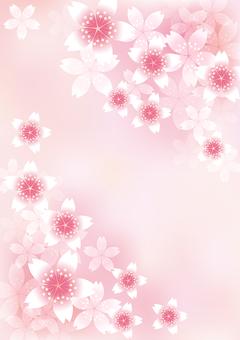 벚꽃의 꽃 25