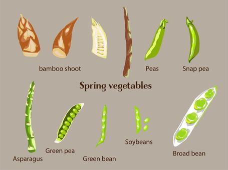 Spring vegetable set with no frame