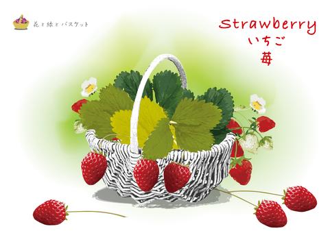 花緑 017 딸기 딸기와 바구니
