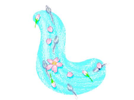 벚꽃과 올챙이
