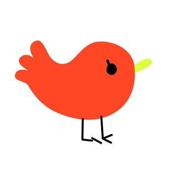 Red bird 10