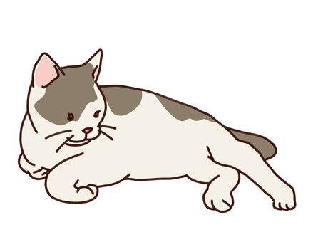 Lie down Nyanko Buchi
