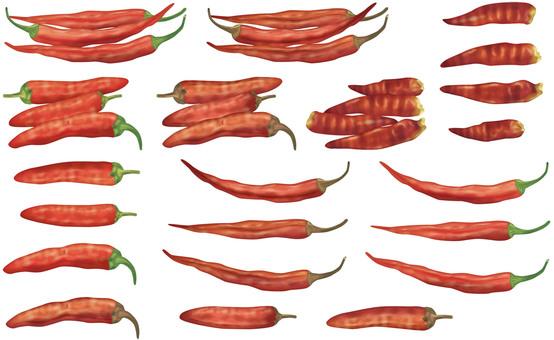 Capsicum / Spice