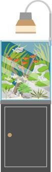 Aquarium layout 3