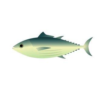 Seafood - bonito