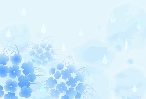 雨背景_紫陽花06
